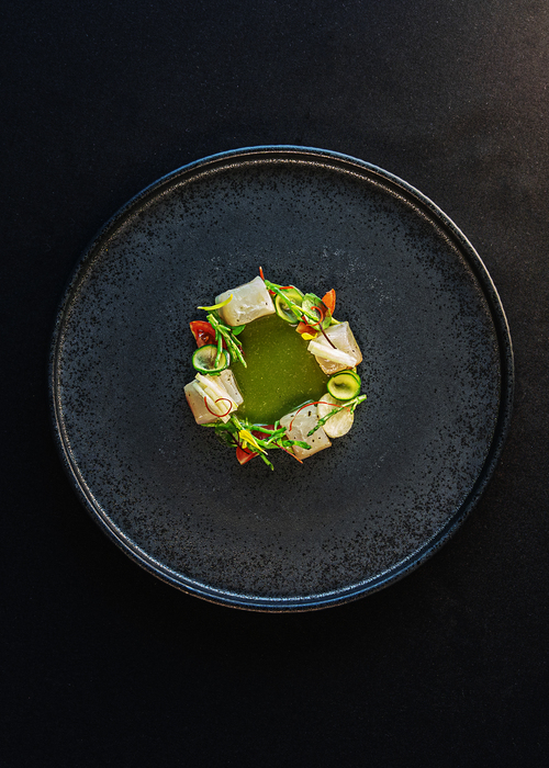 Green fish Aguachile with jicama, cucumber, tomato, apple and fried charalitos
