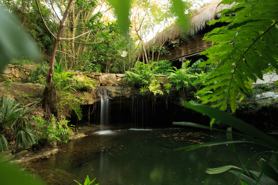 Cenote at Zen Grand ambiance in Grand Velas Riviera Maya