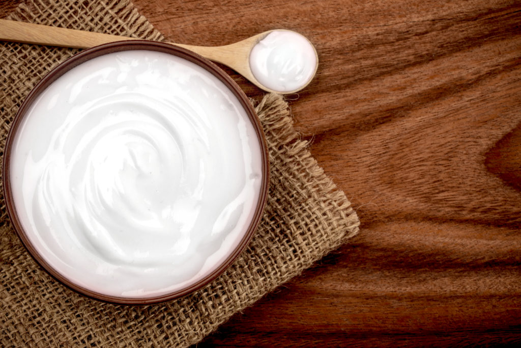 Greek yogurt fermented foods and probiotics