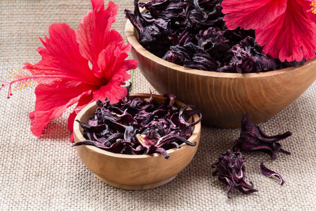 jamaica-flor