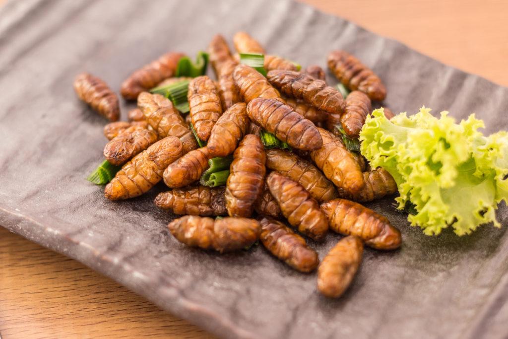 Prehispanic-insects